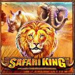 slotciti Safari King