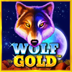 slotciti Wolf Gold