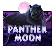 pussy888 PantherMoon