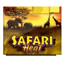 pussy888 SafariHeat
