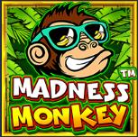slotciti Monkey Madness
