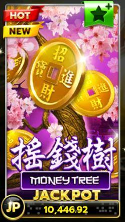 Slotxo-Money-Tree