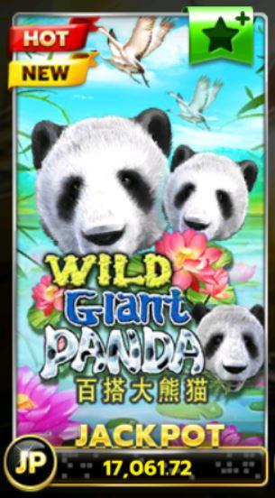 slotxo-Wild-Giant-Panda