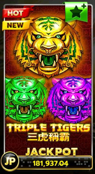 slotxo-triple tigers-ทางเข้า