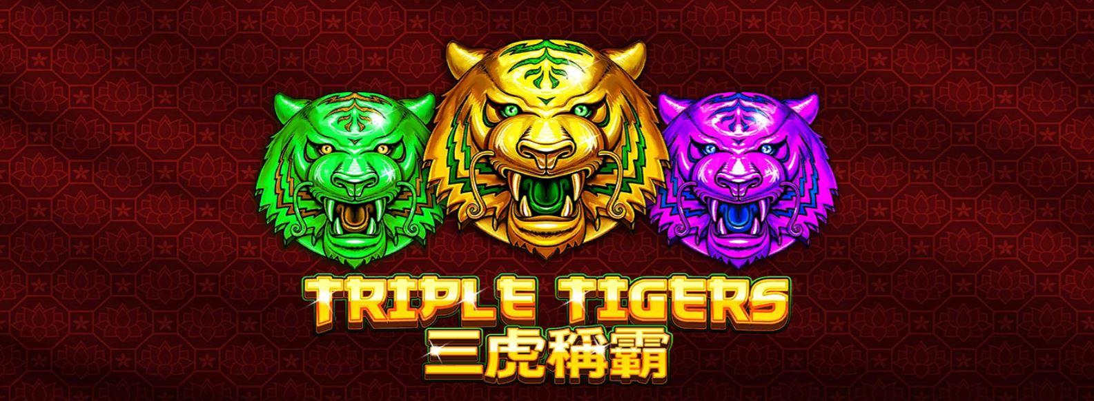 slotxo-triple tigers